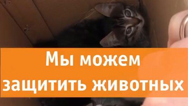 2_5197439928908121702