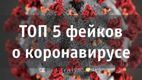 2_5465553172166608166
